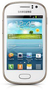 Samsung,  Samsung S6810 Galaxy Fame, White
